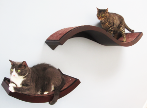 wave pet shelf