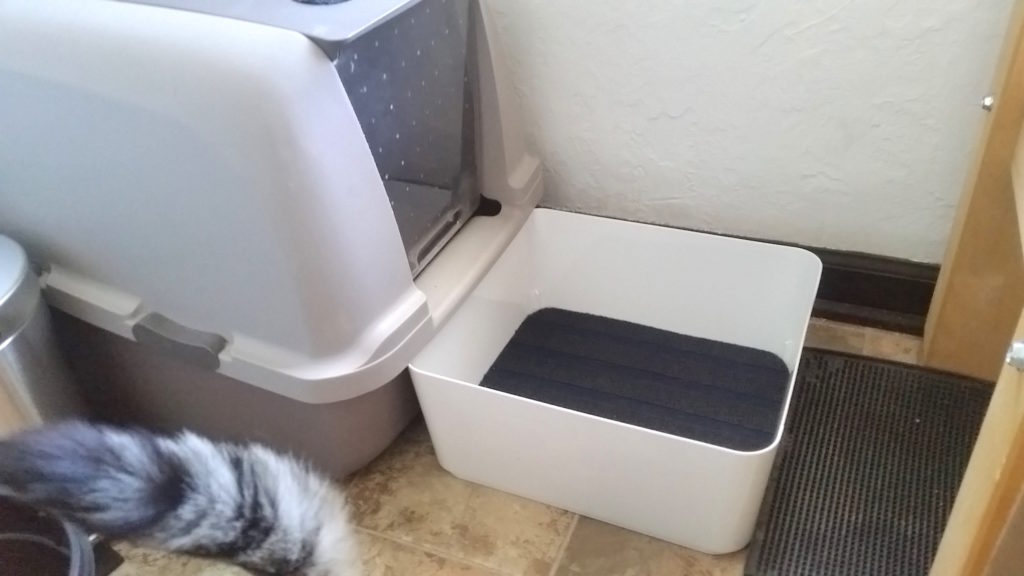 The Latest Why Cat Kitty Hacks Litter Box Edition