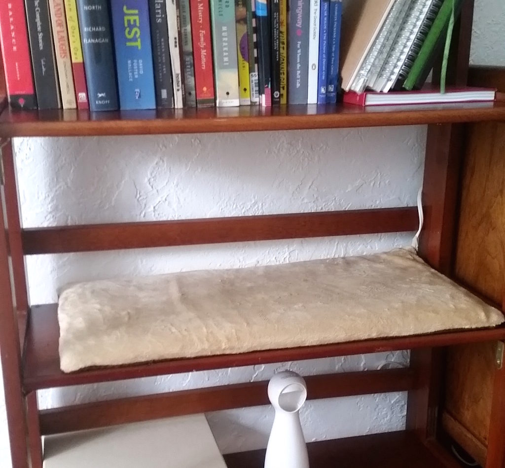 cat bookshelf pad