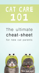 Cat care cheat sheet_Why Cat Why