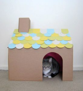 7 Things You Can Make With A Box That Your Cat Will Go Bonkers For