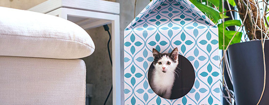 cardboard patterned cat house