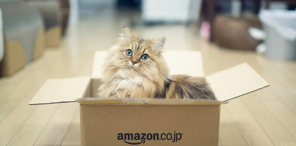 #7 Cat trap & 7 Things You Can Make With a Box (That Your Cat Will Go Bonkers For) | Aboutintivar.Com