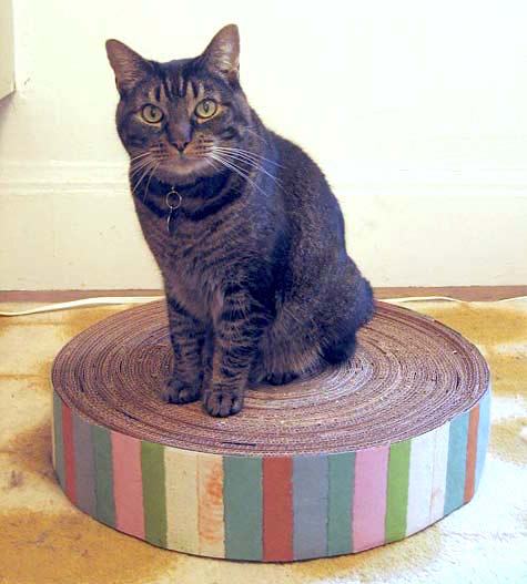 diy cat scratcher lounge