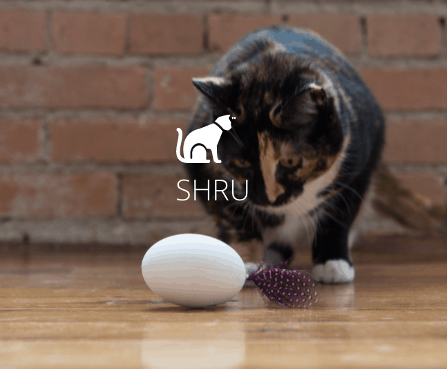 shru-automatic-cat-toy