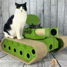 Guide To Cat Toys: A Wonderfully Weird World